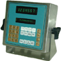Industrail Data Systems SSDI II Environmental Scale