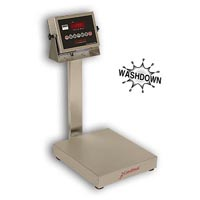 Detecto EB-205 Series Stainless Steel Bench Scales